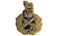 No. 1 Dress Embroidered Badges